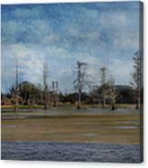 Marsh Lands  Canvas Print