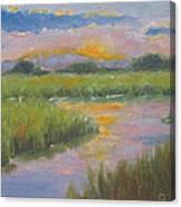 Marsh Light Canvas Print