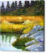 Marsh Canvas Print