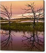 Marsh Oil Painting Canvas Print