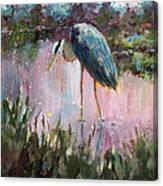 Marsh Time Canvas Print