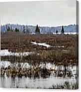 Marsh Tones Canvas Print