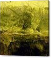 Marsh Under Canvas Print