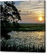 Marsh View Canvas Print