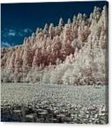 Marshall Pond In Infrared Canvas Print