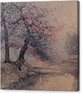 Marshell Creek Canvas Print