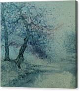 Marshell Creek IIi Canvas Print