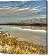 Marshlands 2 Canvas Print