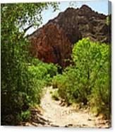 Martinez Canyon Canvas Print