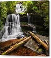 Martins Creek Falls Canvas Print