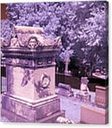 Mary And John Tyler Memorial Near Infrared Lavender And Pink Canvas Print