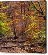 Maryland Country Roads - Autumn Colorfest No. 8 - Catoctin Mountains Frederick County Md Canvas Print