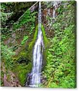 Marymere Falls - Full View Canvas Print