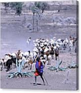 Masai Herder Boy Canvas Print