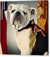 Mascot Of The United States Marine Corps Canvas Print