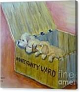 Maternity Ward Canvas Print