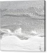 Matte And Lustre Canvas Print