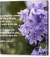 Matthew 6 Verses 28 And 29 Canvas Print