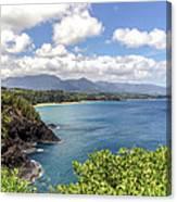 Maui Coast Canvas Print
