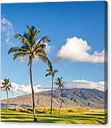 Maui Hawaii Canvas Print