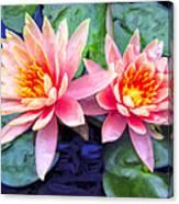 Maui Lotus Blossoms Canvas Print