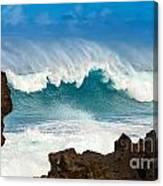 Maui Monster Canvas Print