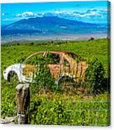 Maui Upcountry Rusted Car Canvas Print