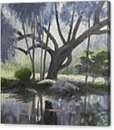 Mauve Morning Canvas Print