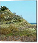 May Cape Canvas Print