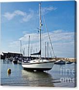 May Morning - Lyme Regis Canvas Print