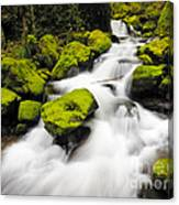 Mccord Creek, Columbia Gorge Canvas Print
