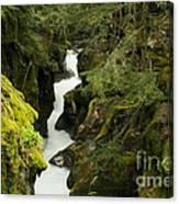 Mcdonald Creek Cateracts Canvas Print