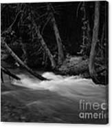 Mcdonald River   #1983 Canvas Print