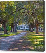 Mcleod Plantation Canvas Print