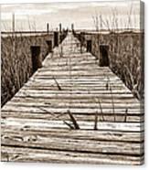 Mcteer Dock - Sepia Canvas Print