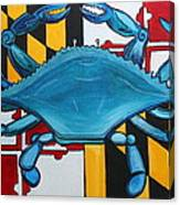Md Blue Crab Canvas Print