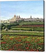 Mdina Poppies Malta Canvas Print