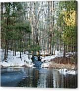 Meadow Brook Pond 1 Canvas Print