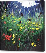 Meadow Glory Canvas Print