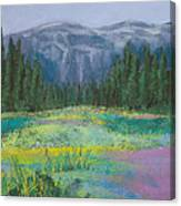 Meadow In The Cascades Canvas Print