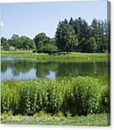 Meadow Lake Canvas Print