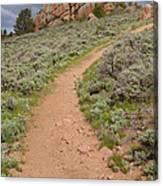 Medicine Bow Blair Trail #6 Canvas Print