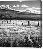 Medicine Springs Fenceline Canvas Print