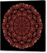 Medicine Wheel Dragonspur Fractal K12-3 Canvas Print