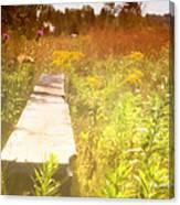 Meditation In Sunlight 1 Canvas Print