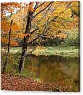 Meduxnekeag River 1 Canvas Print