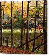 Meduxnekeag River 4 Canvas Print