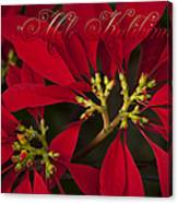 Mele Kalikimaka - Poinsettia  - Euphorbia Pulcherrima Canvas Print