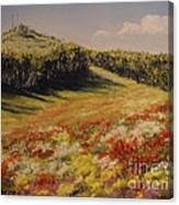 Melkow Trail  Canvas Print