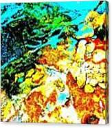 Mellow Yellow 80 Canvas Print
